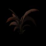 SM_TR_Docks_Jungle_Flower_01
