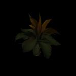 SM_TR_Docks_Jungle_Flower_03