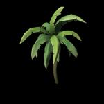SM_TR_Docks_Palm002